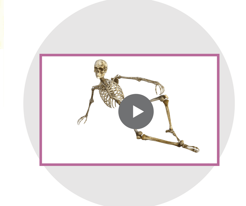 Online Anatomy and physiology course